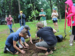 Teens learning about tree planting