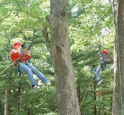 Image of NCRR tree trimming