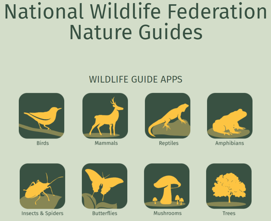 National Wildlife Federation Nature Guides Apps
