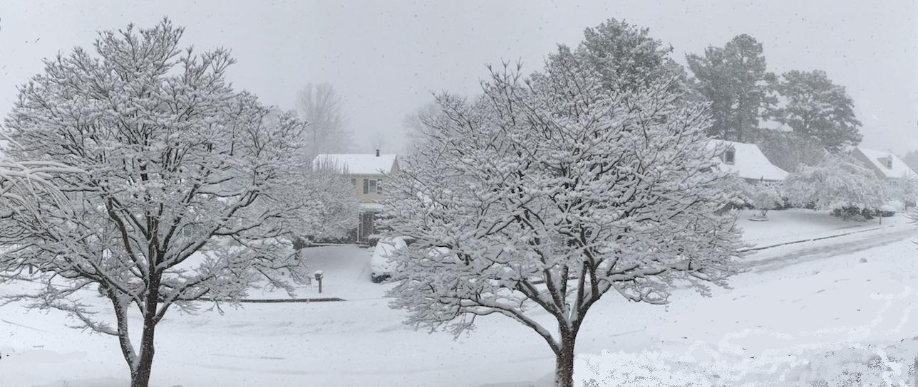 Winter scene in Parkville, 2018, image by Glenn Ferenschak.