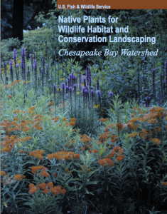 Cover of the PDF booklet of Native Plants for Wildlife Habitat and Conservation Landscaping